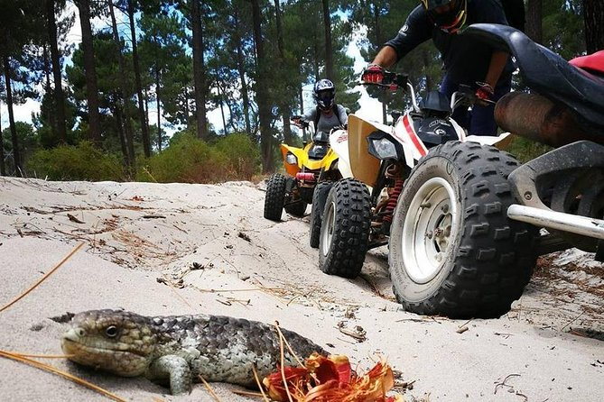 3 Hours Quad Bike Tours, only 35 minutes from Perth
