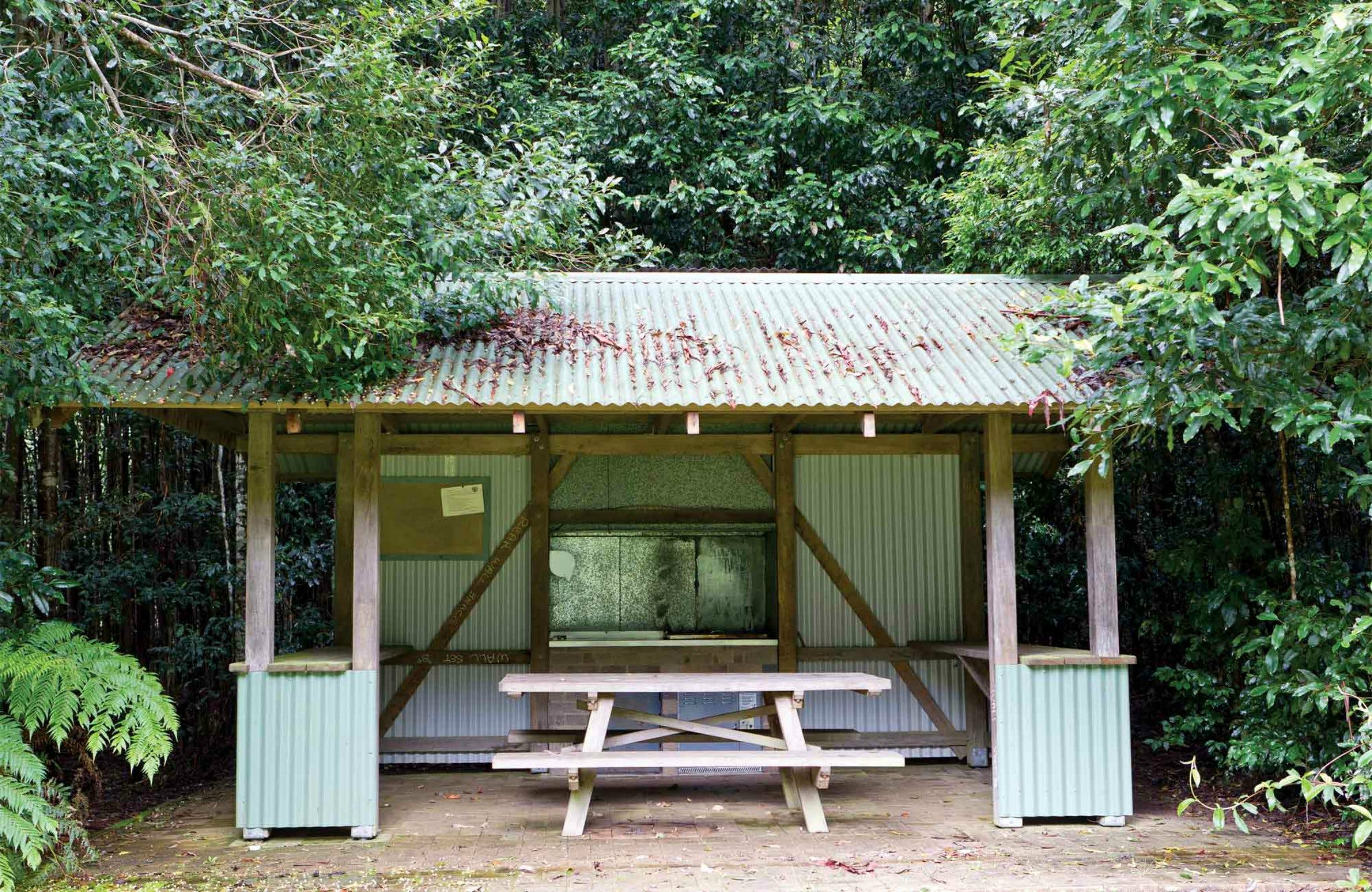 Coachwood Picnic Area - Accommodation Great Ocean Road