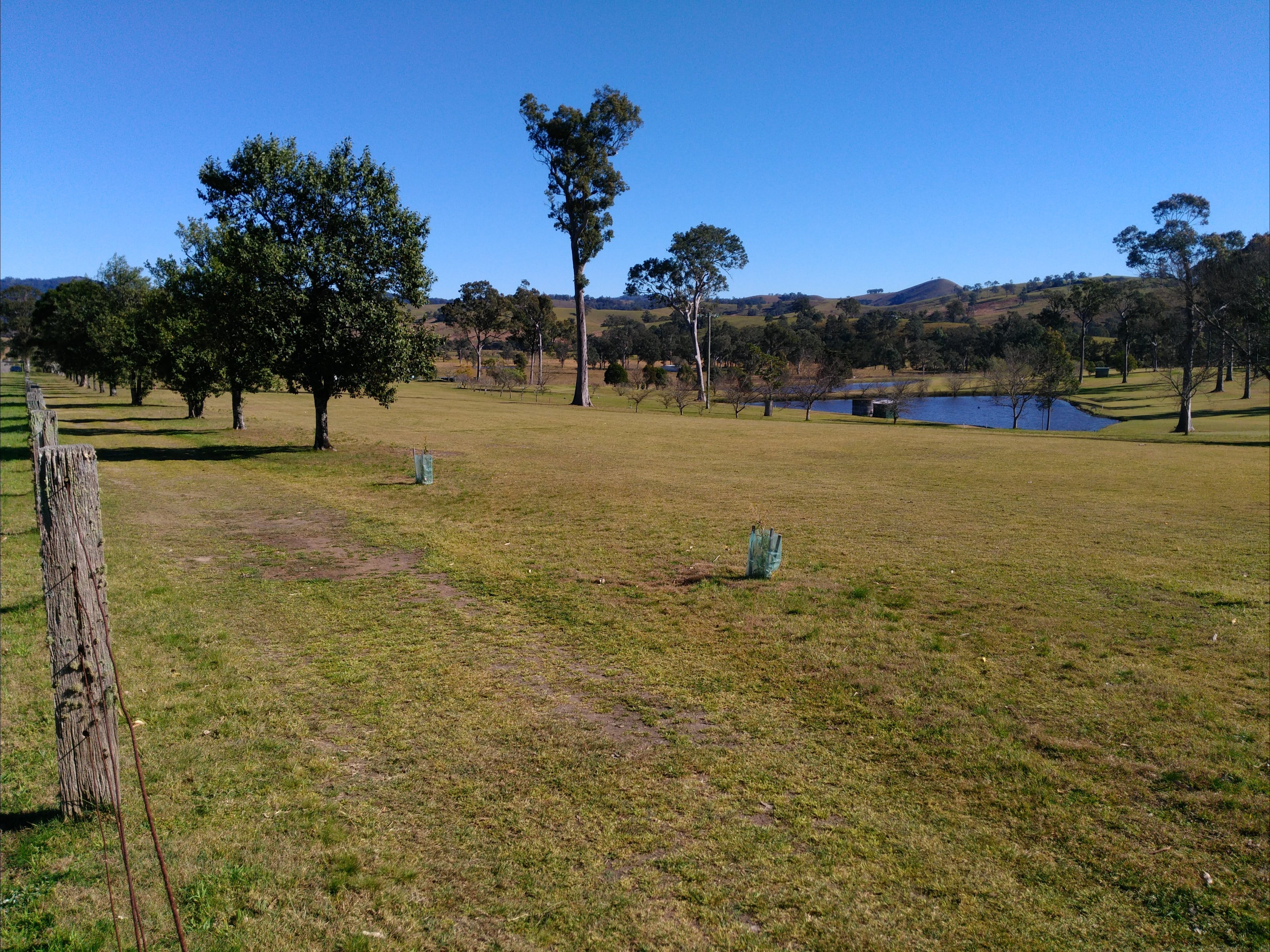 Dungog and District Golf Club - Accommodation Great Ocean Road