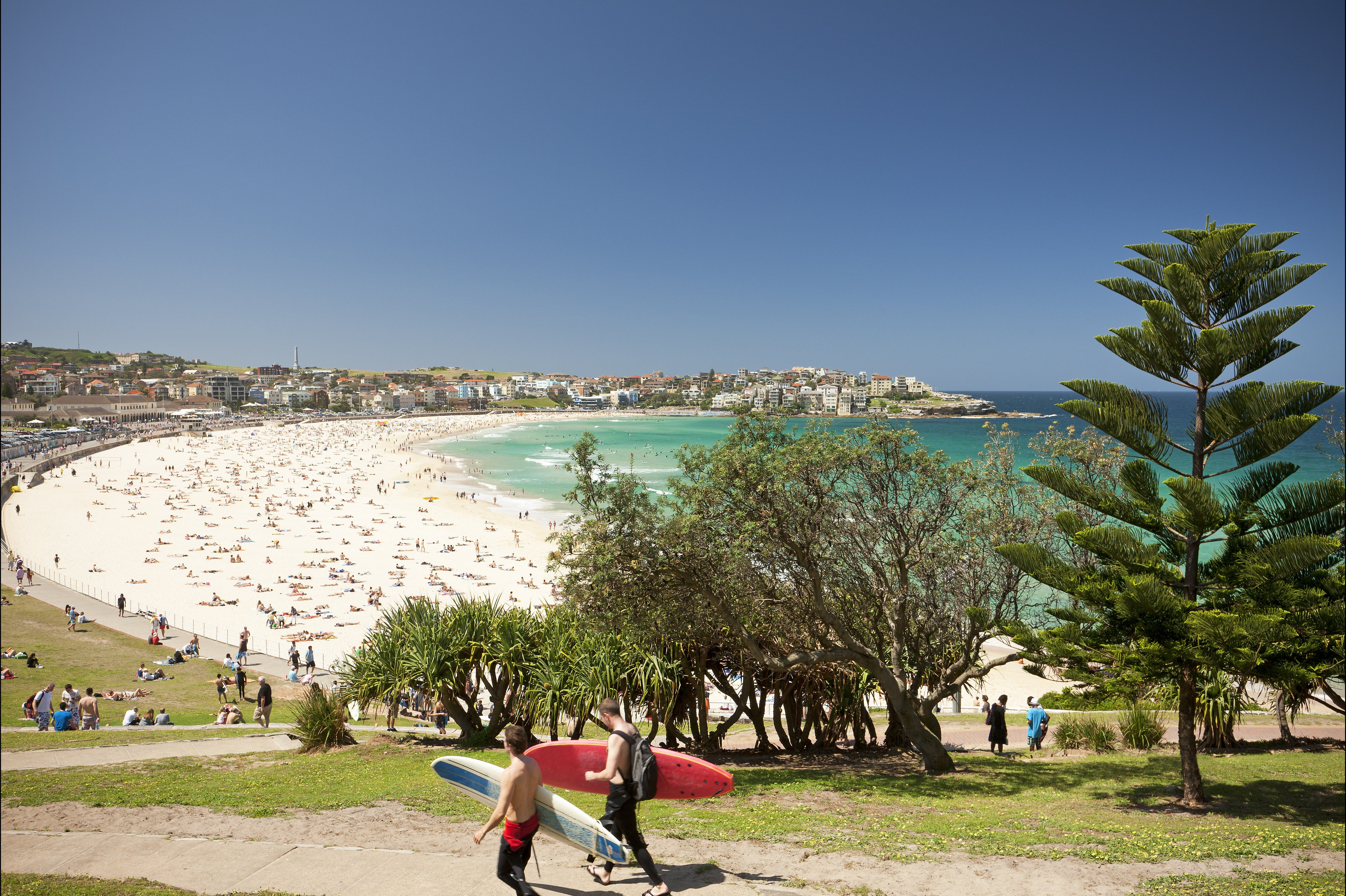 Bondi to Coogee Coastal Walk - Accommodation Great Ocean Road