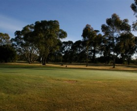 Winchelsea Golf Club - Accommodation Great Ocean Road