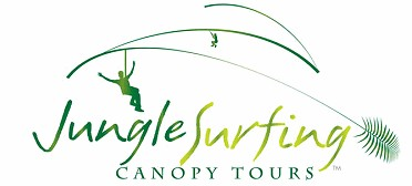Jungle Surfing Canopy Tours and Jungle Adventures Nightwalks - Accommodation Great Ocean Road