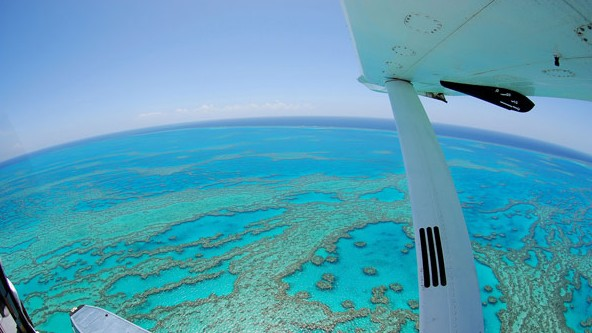Air Whitsunday Day Tours - Accommodation Great Ocean Road