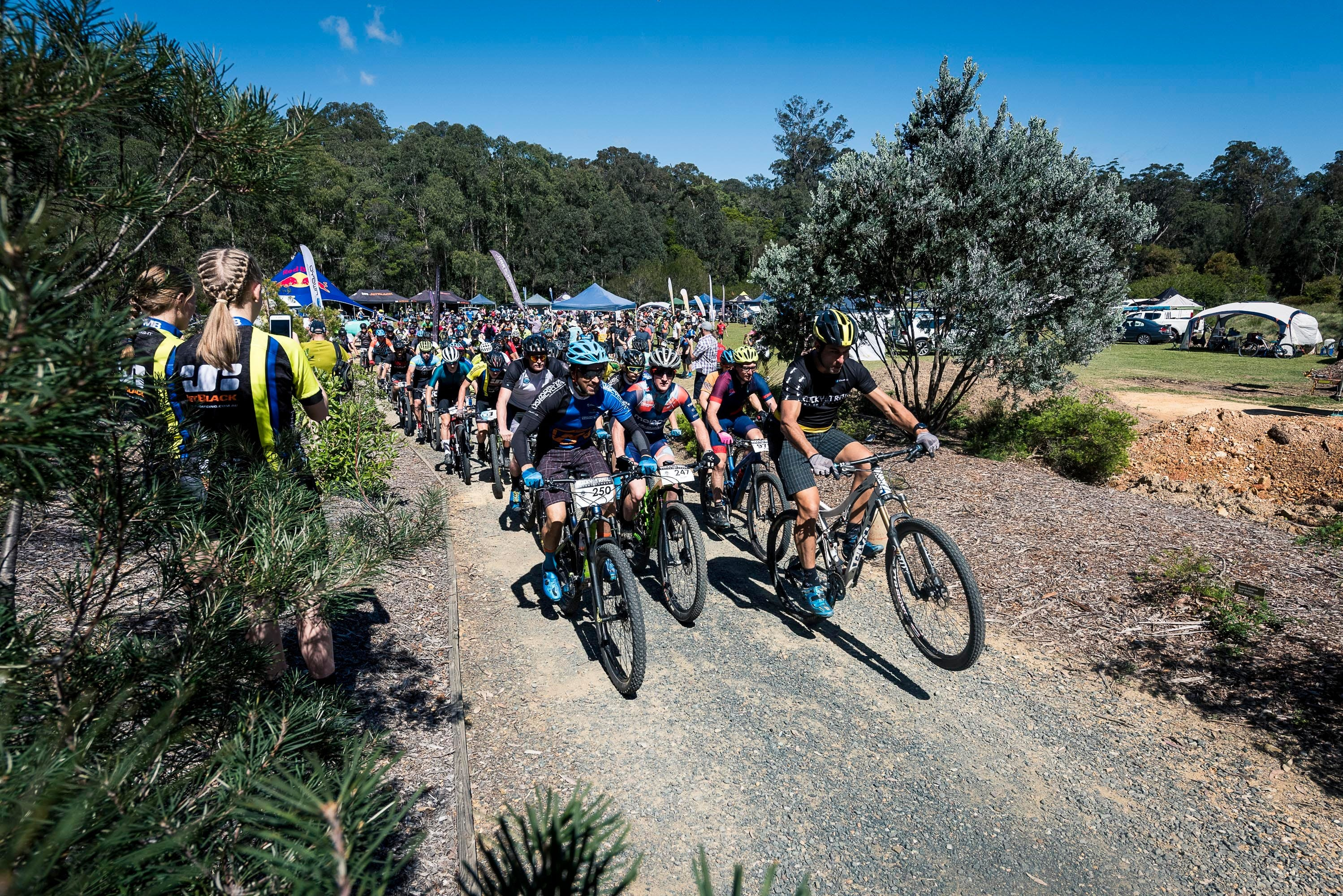 JetBlack Wild Wombat MTB Challenge - Accommodation Great Ocean Road