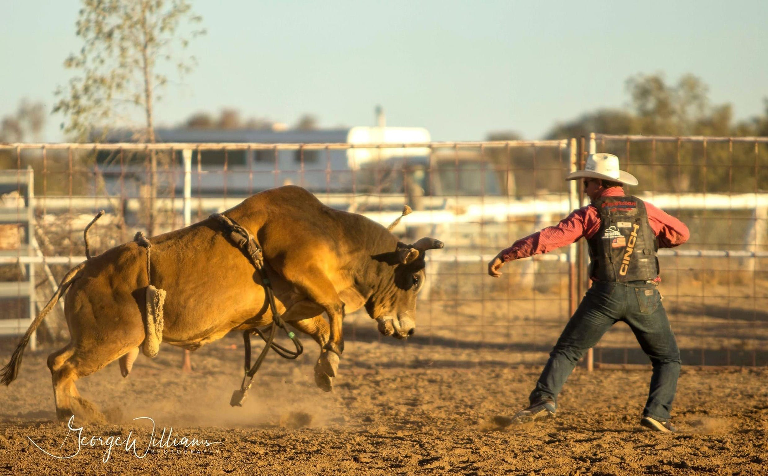 Walgett Charity Bushman's Carnival Rodeo and Campdraft - Accommodation Great Ocean Road
