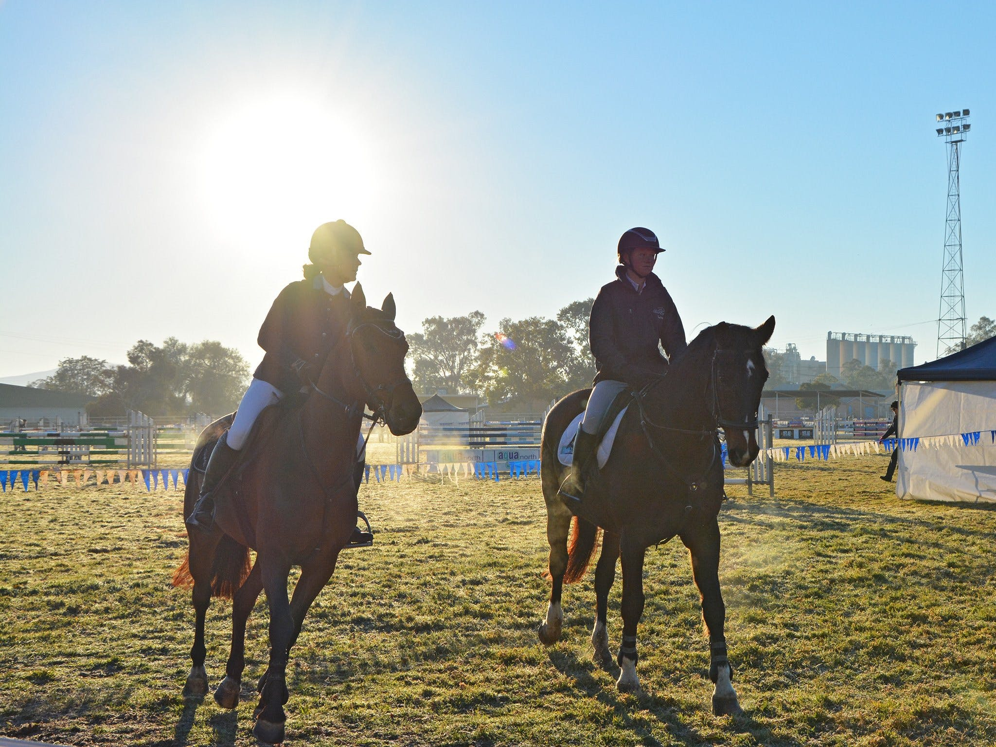 Gunnedah Showjumping Festival - Accommodation Great Ocean Road