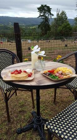 Kurrajong Bark Park and Cafe BCM - Accommodation Great Ocean Road