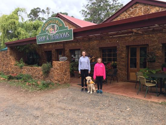 Porongurup Tea Rooms - Accommodation Great Ocean Road
