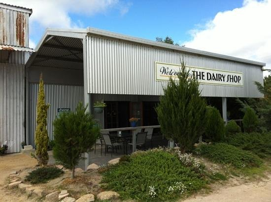 Granite Belt Dairy - Accommodation Great Ocean Road