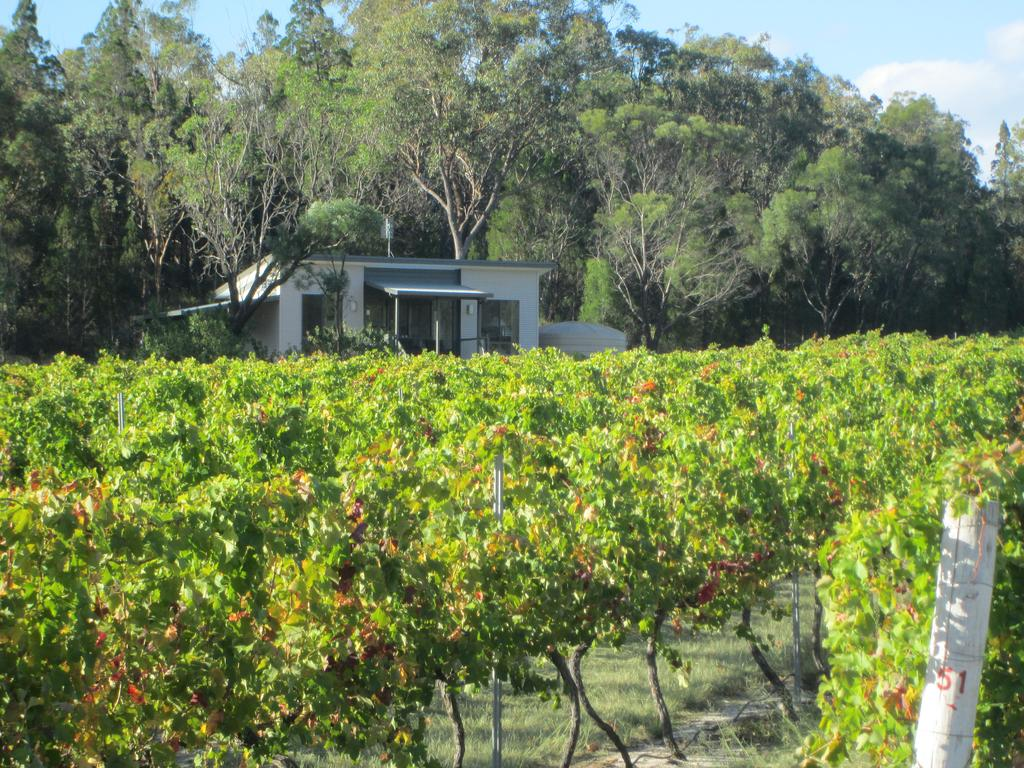 Just Red Wines Cabins - Accommodation Great Ocean Road