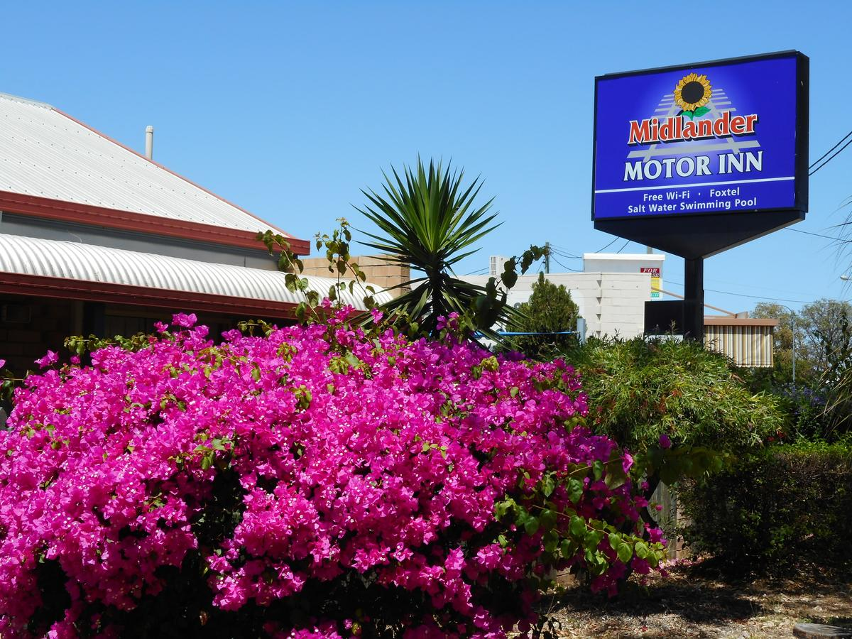 Midlander Motor Inn - Accommodation Great Ocean Road